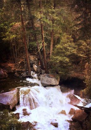Along Tenaya Creek