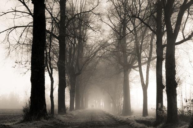 Winter fog in North Italy's plan