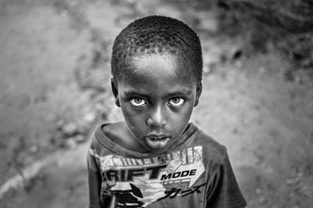 Tales of Lamu