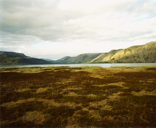 Untitled Landscape (Landscape #1), 1998
