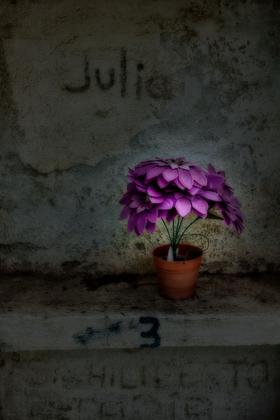 Las flores para los muertos #1