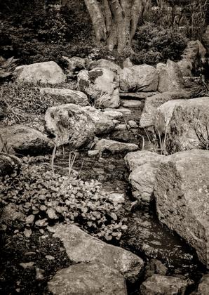 Lafcadio Hearn Commemorative Gardens - 01