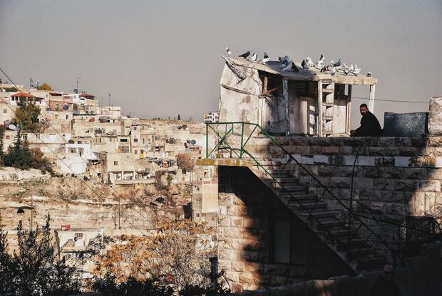 Pigeon's Journeys, Amman, Jordan