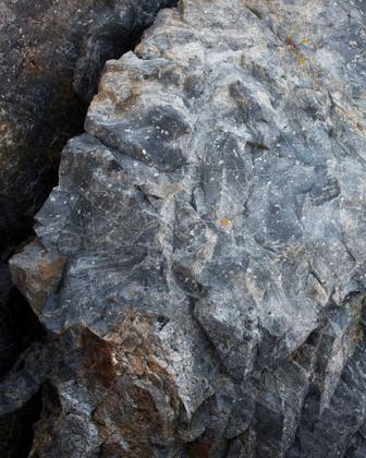 Granite Zenolith