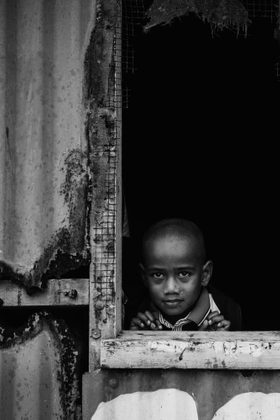 The Curious Kid
