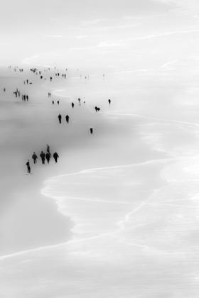 Foggy Day at Ocean Beach