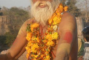 Guru in India