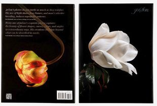 "Front and back cover of photographer joSon  book ""joSon Intimate Portraits of Nature"""