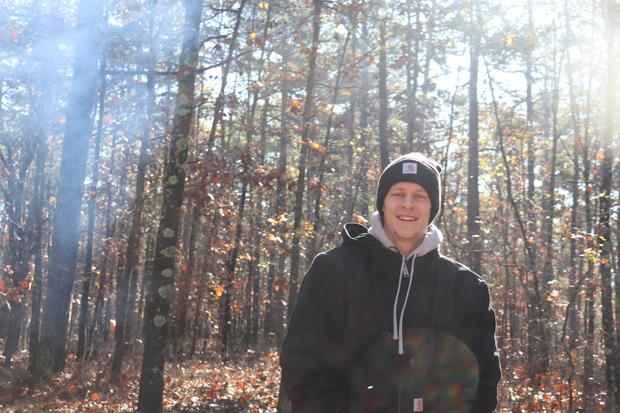 Forest, Smoke, Sunlight