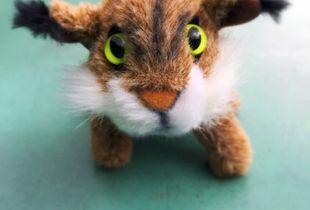 Bob the Bobcat