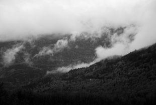 Foggy Alaskan Layers