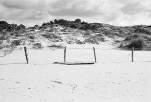 Dunes n°3