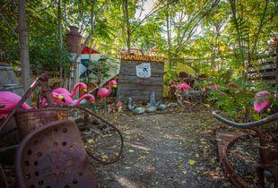 Flamingo Grove