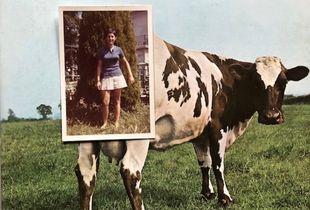 Il mio '68 sognando Dylan e i Pink Floyd