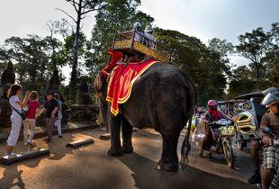 Tráfico en Siem Riep