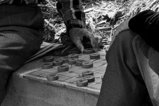 Chinese chess San Fransisco