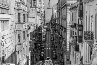 Maltese Unicycle Jester