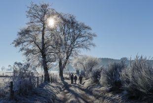 Winter in Ardennen Belgium