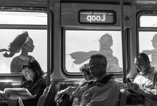 On the Brown Line