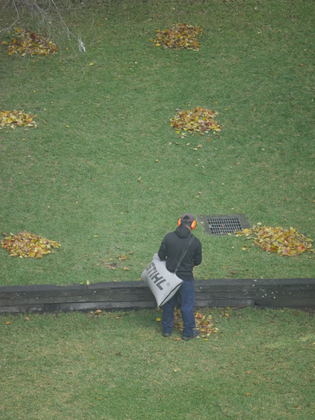 The man that cleans leaves