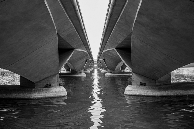 Bridge of Symmetry