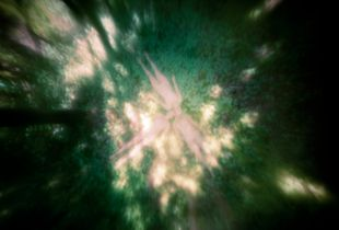 untitled, 2013; archival pigment print from large frormat pinhole negative   © DM Witman