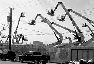 The Cranes Of Bushwick #1