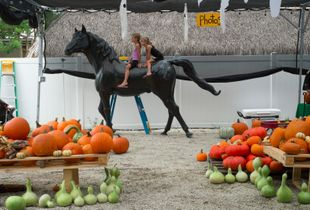 The Twins, The reMARCable Pumpkin Patch, Key West, Florida. © Rona Chang