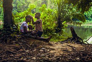 Children Of The Rain Forest