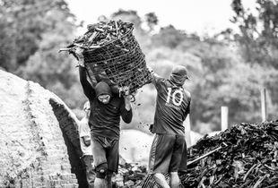 CARVOEIROS: AN AMAZON THAT NOBODY SEES