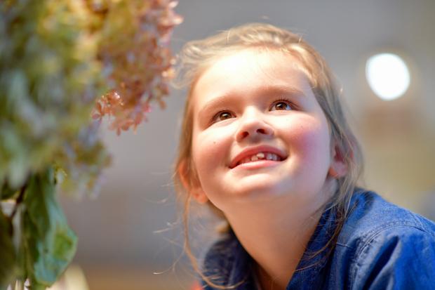 Flowergirl loosing her tooth