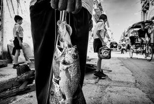 Dos hermanos y cinco pez