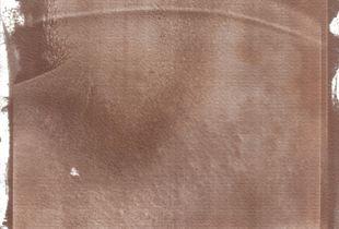 Bipolar: Salt prints