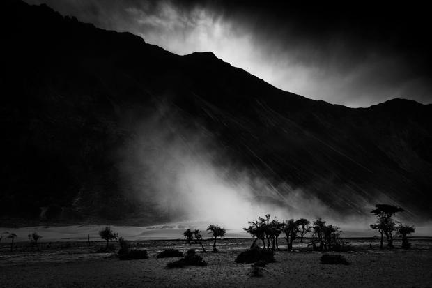 Light n Life in Rocky Desert