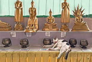Cat with no manners - Big Buddha - Chalong