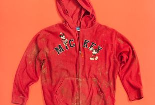 Virgen de Mickey, Red