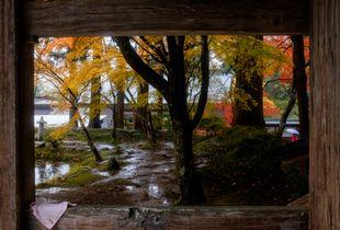 Autumn Rain, Hiraizumi