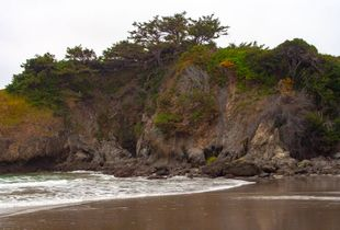 North West at Jug Handle State Reserve, Ft. Bragg California