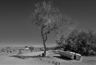 Forty Days in the Desert. No 9.