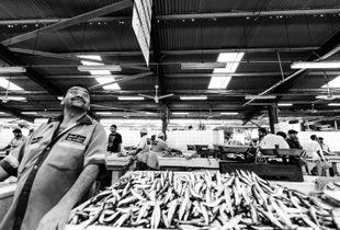 Deira fish market in Dubai