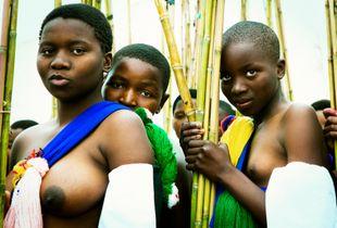 Reeddance, Shiselweni Swaziland