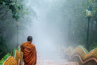 A monk in the mist