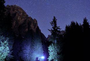 A trail runner's dream