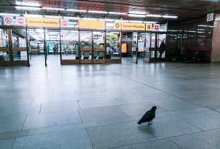 The metro's visitor