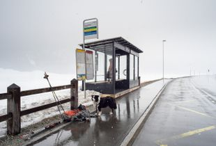 Bus stop in the middle of nowhere