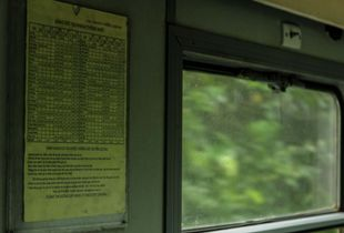 Timetables in green hue