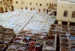 The tannery of Fès, Morocco