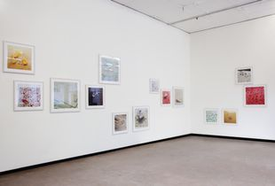 Installation view of the series horror vacui