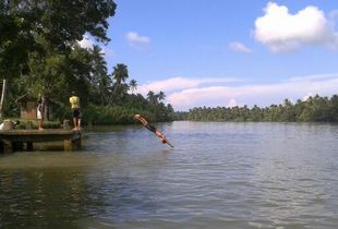 Diving in the River