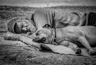 Homeless napping with his dog